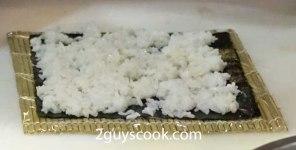Futomaki Rice