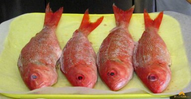 Red Snapper Cleaned