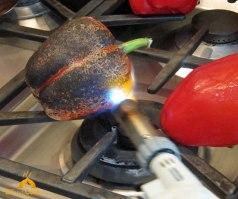 Torch Pepper 2